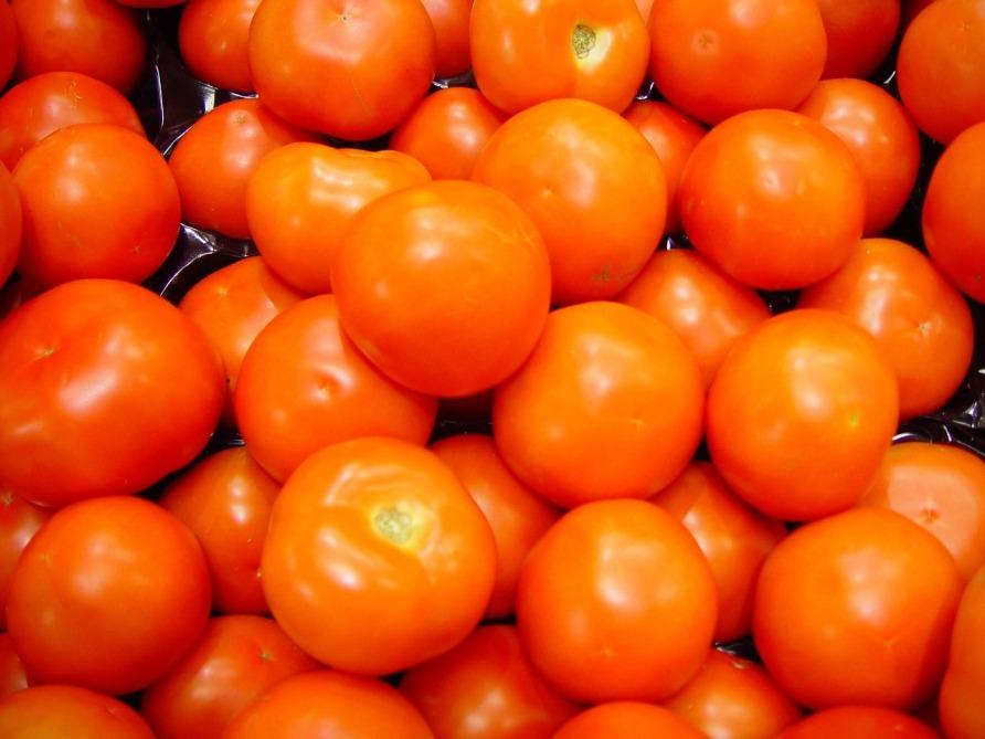 tomatoes-647736_1280
